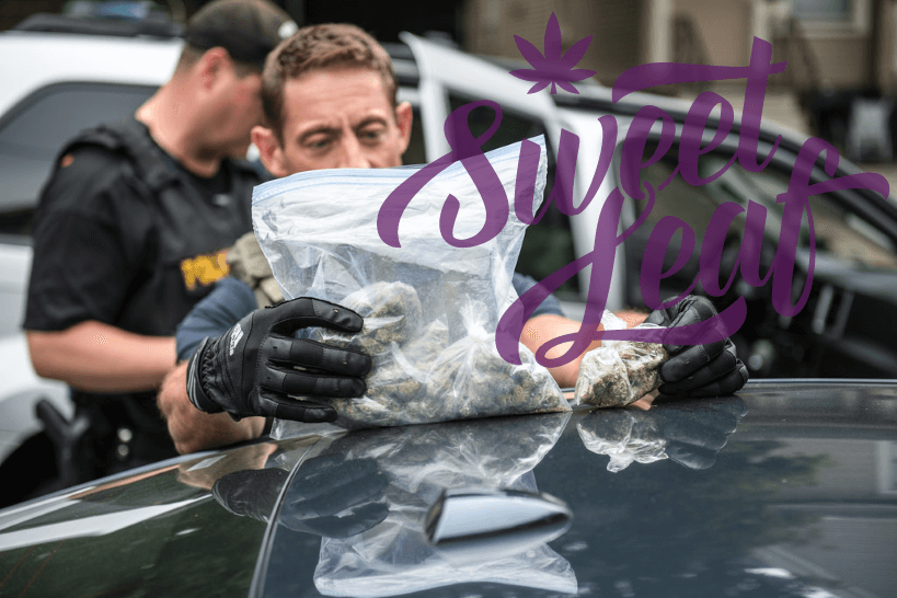 Sweet Leaf Arrests Demonstrate Continued Risks in Legalized Cannabis Markets